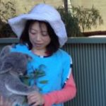 祝祝祝祝 パート2、待望のコアラだっこ半日ツアーーーーーーーー。