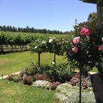 ドリプラオリジナルツアー報告!!!個性的なオーストラリアワインの隠れた名産地スワンバレー、ワイナリーブリューワリー、地元名産グルメツアーをまるごとお見せします。