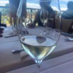 2月ドリプラ遠足、スワンバレーワイン製造過程見学