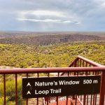 ドリプラオリジナルツアー「世界遺産シャークベイと西オーストラリアの秘境カルバリ国立公園を巡る感動の旅4日間」後半