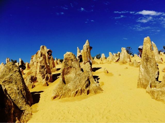 世界遺産シャークベイと西オーストラリアの秘境カルバリ国立公園を巡る感動の旅4日間。 Image8