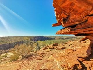 世界遺産シャークベイと西オーストラリアの秘境カルバリ国立公園を巡る感動の旅4日間。 Image5