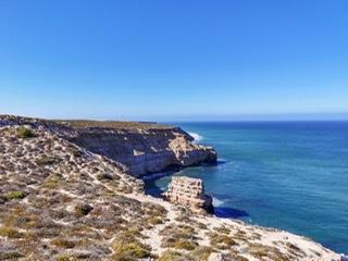 世界遺産シャークベイと西オーストラリアの秘境カルバリ国立公園を巡る感動の旅4日間。 Image9